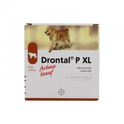 Bayer drontal xl 2 comprimés
